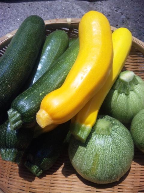 無農薬野菜イタリアンディナーワイナ名古屋市名東区高針