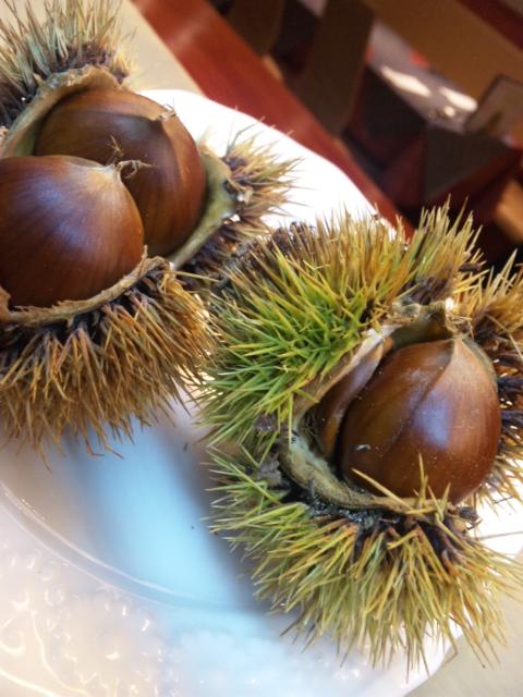 栗イタリア料理    Waina    <br />  名古屋市名東区高針